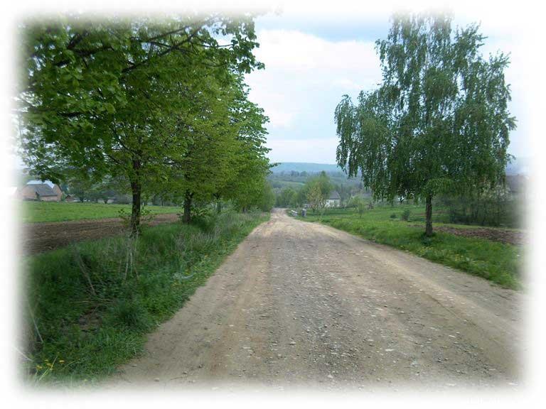 В'їзд з Доброгостоів в Бистрий